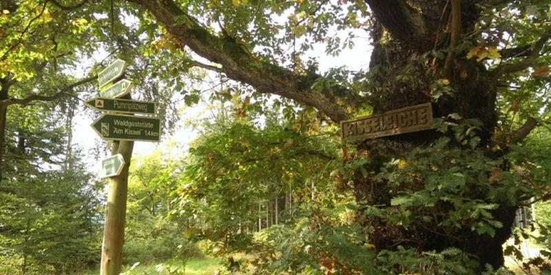 Wanderungen Villa Rossek